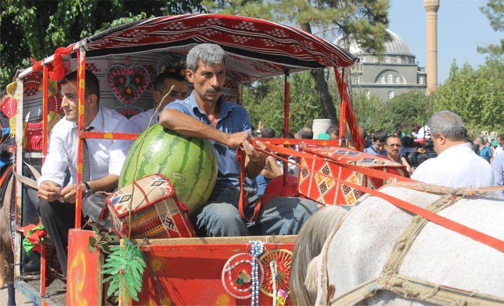Фестиваль арбуза в Диярбакыре cbc3c939f56d3ec1d208cb38bd51e295.jpg