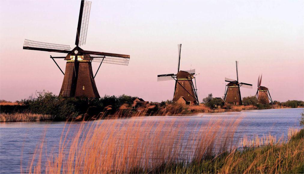 День мельника в Нидерландах d57bfa63bec0502e439df790b48b681f.jpg