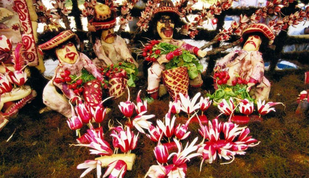Фестиваль «Ночь редиса» в Оахаке d9077e142356f46d9baf93e58a3f8876.jpg