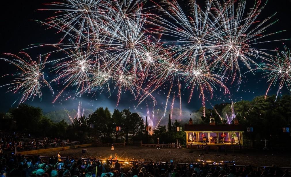 Техасский фестиваль Ренессанса в Плентерсвиле d96b2aad7ef5ce8441c9d73e83f32999.jpg