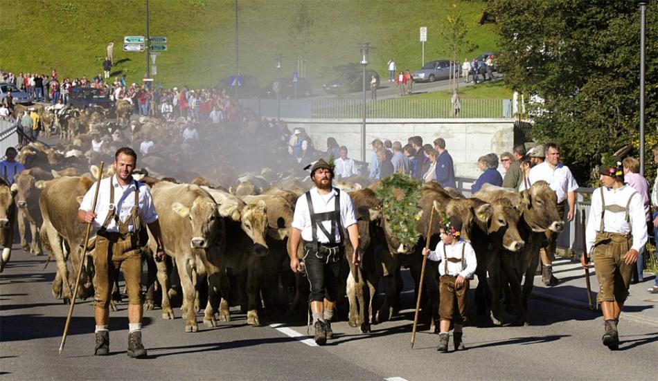 Фестиваль альпийских рогов в Кляйнвальзертале db9f3b8fa848a05b968f454ad659cc81.jpg