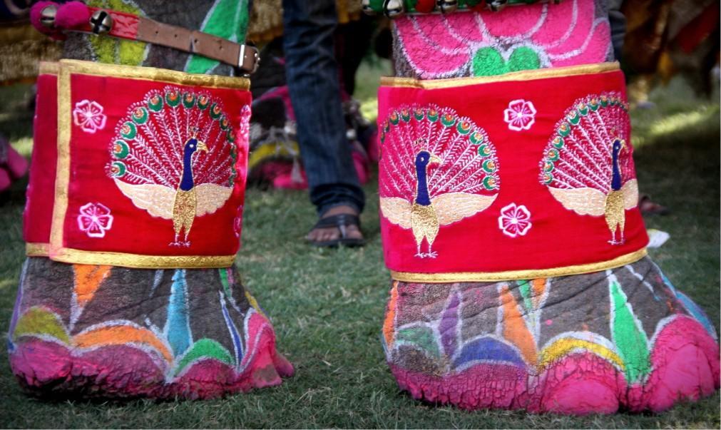 Фестиваль слонов в Джайпуре ddbc71de03e7917ccfc85194410f6626.jpg