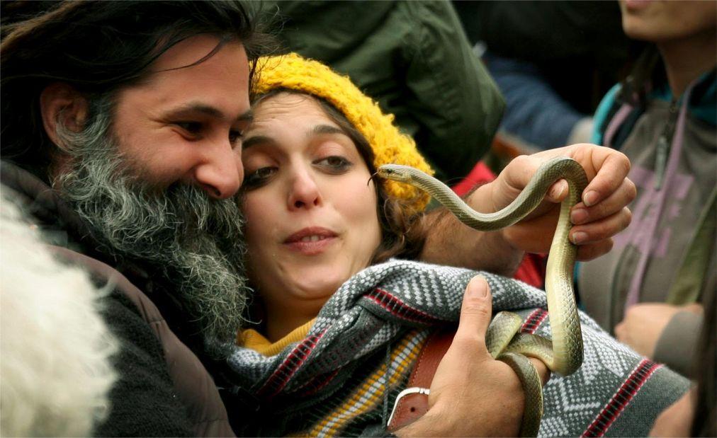 Фестиваль змей в Кокулло de620cbea54fe341c9957b79079e5066.jpg